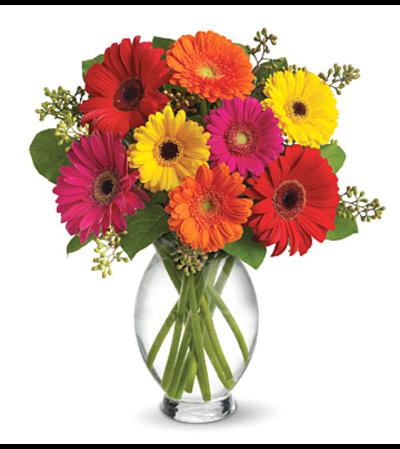Teleflora Gerbera Brights Bouquet