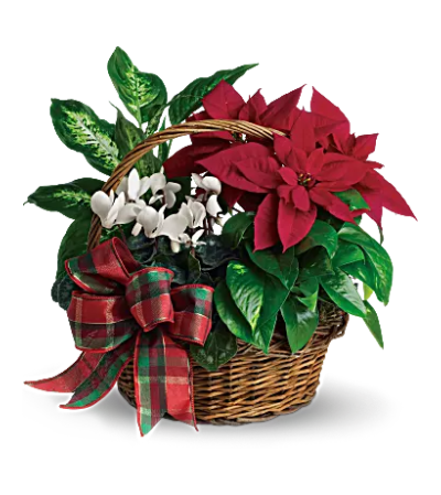 Holiday Homecoming Basket