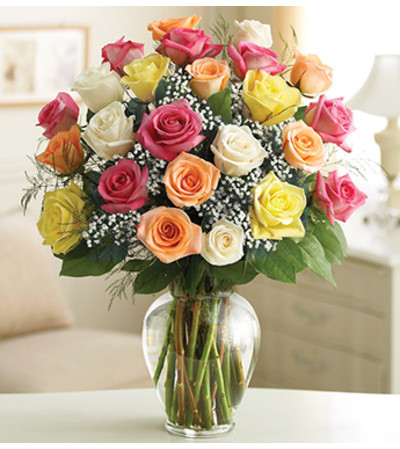 Mixed Colored Roses