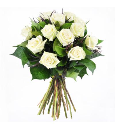 12 WHITE ROSE