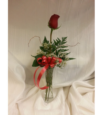 Single Stem Rose in a Vase