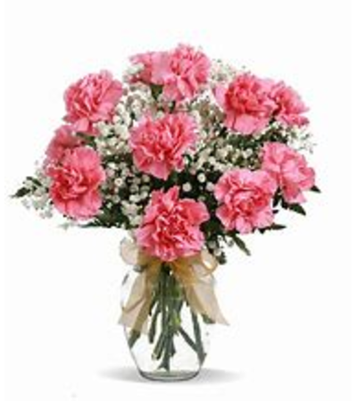 Dozen Carnations Vased