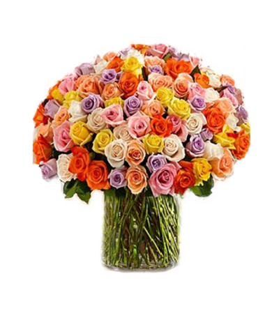 100  Long Stem Assorted  Roses