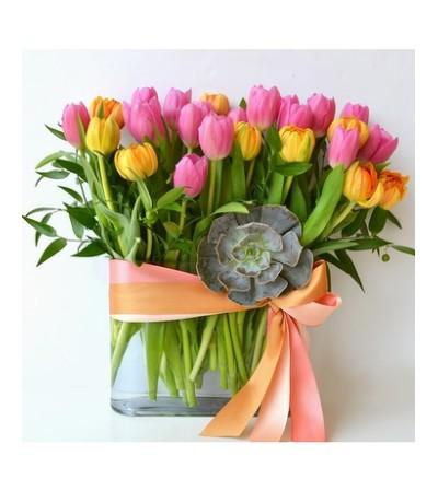 SpringTime Tulip Garden