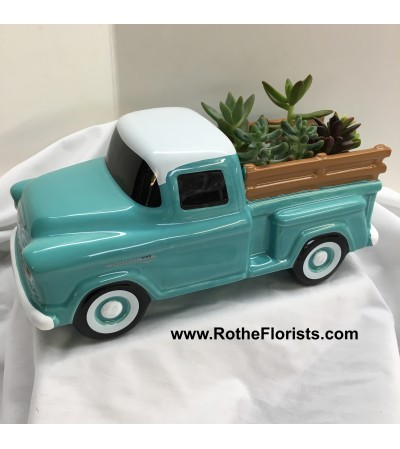 55 Chevy Pickup Truck - Succulents