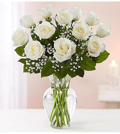 White Roses One Dozen