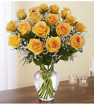 Yellow Roses Eighteen