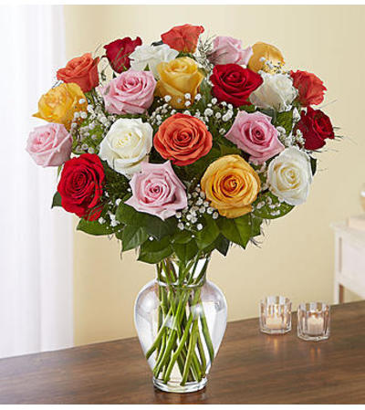 Assorted Roses Two Dozen