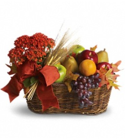 Fresh Picked Basket by Teleflora