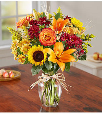 Fields of Europe™ for Fall by 1800 Flowers
