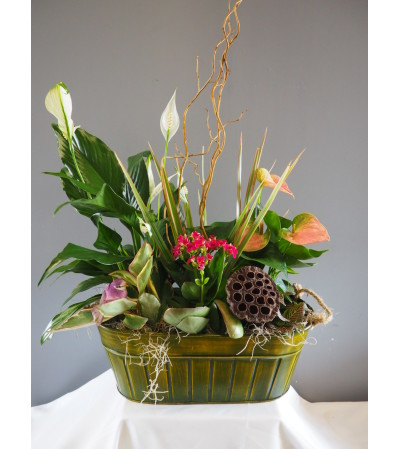 Blooming Everyday Tin Planter