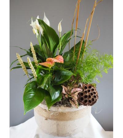 Beautiful Blooming Stoneware Garden