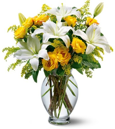 Yellow and White Sentiments