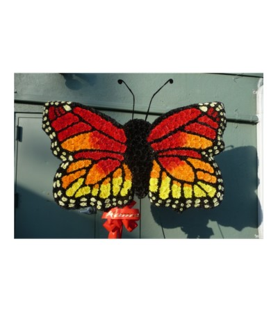 CUSTOM MONARCH BUTTERFLY 2