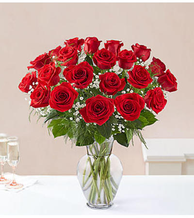 Red Roses Two Dozen
