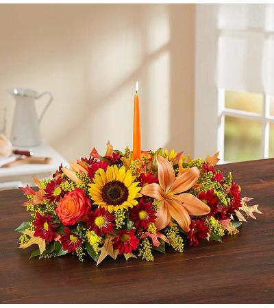 Fields of Europe Fall Centerpiece