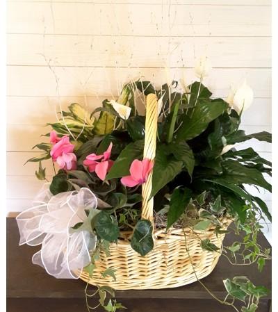 Winter Garden Basket