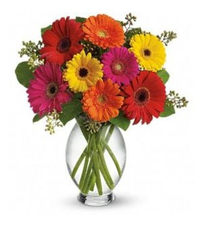 SALE!!! Teleflora Gerbera Brights Bouquet