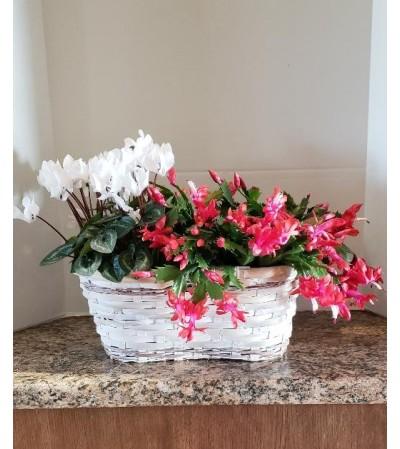 Holiday Christmas Basket