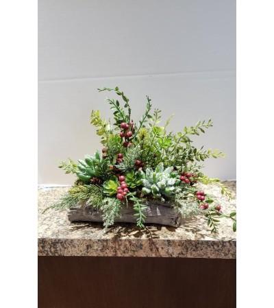 Season of Succulents (Silk)