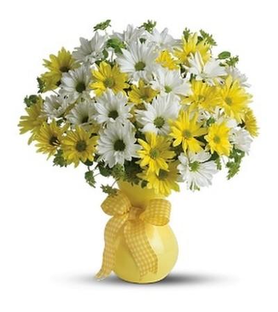 Yellow Upsy Daisy