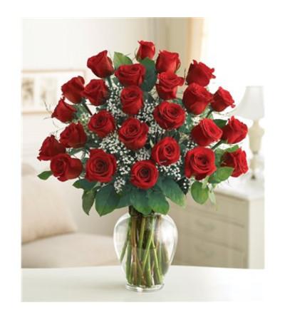 Two Dozen Romance Vase