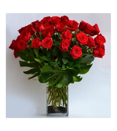Stunning 48 Rose Statement ***LOCAL DELIVERY ONLY ***