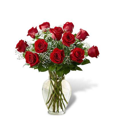 One Dozen Roses 2019
