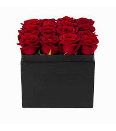 Black Box of Roses