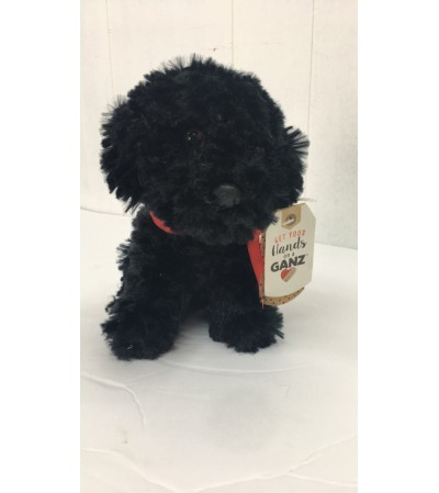 Beau the poodle (black)