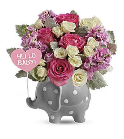 Hello Sweet Baby - Baby Girl TNB06-1