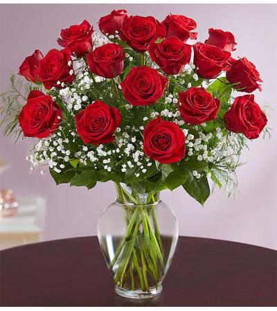 Beautiful Long Stem Red Roses
