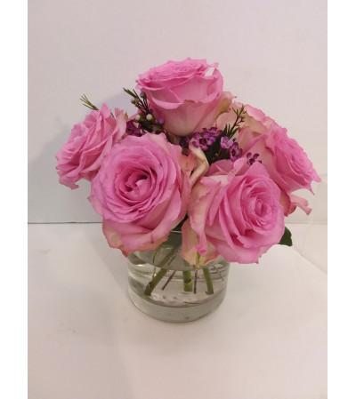 Sweet Pinks Roses