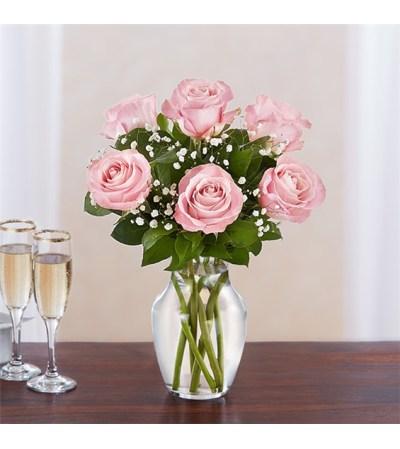 6 Pink Roses w/vase