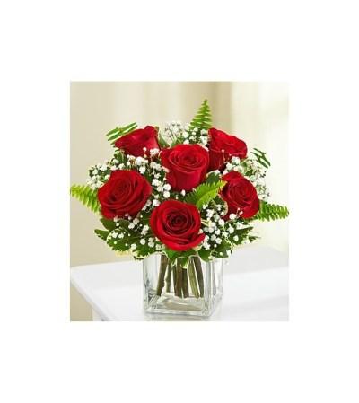 6 Red Roses w/vase