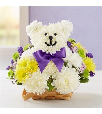 Get Well Beary Bear