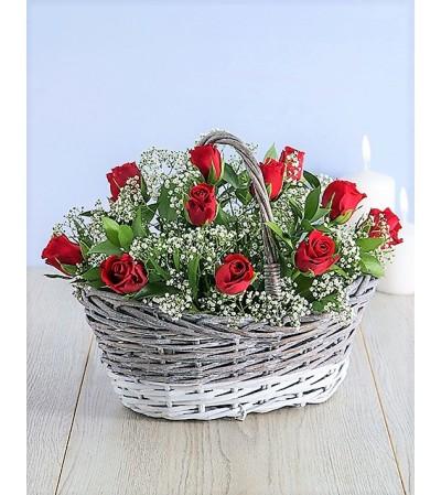 Roses-Fiona