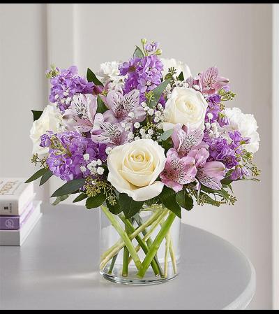 Lavender Sentiments