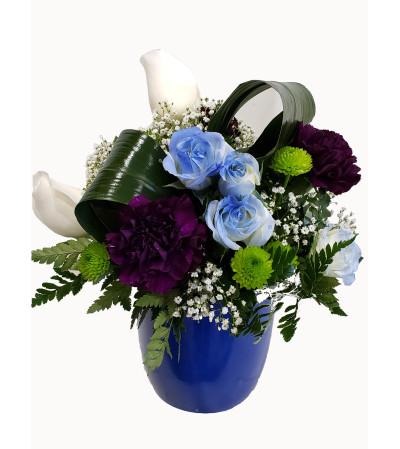 Blue Rose Rapture