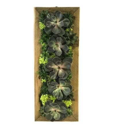 Hanging Succulent Garden 8x21