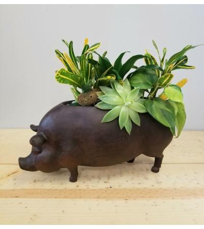 Bell's Pet Pig
