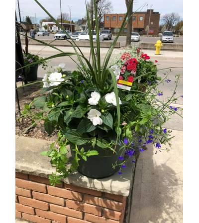 Beautiful Blooming Mixed Patio Pot