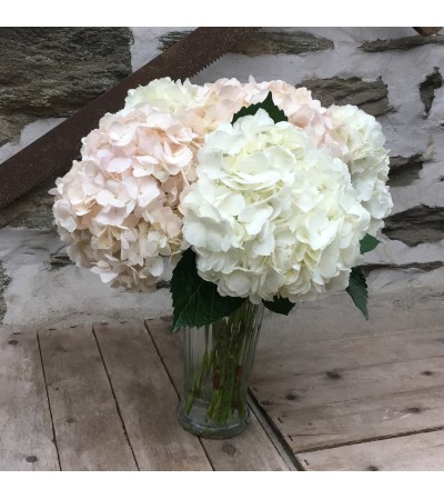 Graceful Hydrangea for Mother's Day