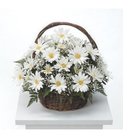 Mom's Daisy Basket