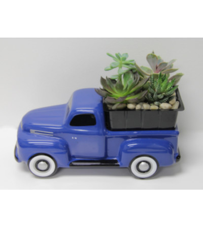 65 Ford Truck Succulent Bouquet