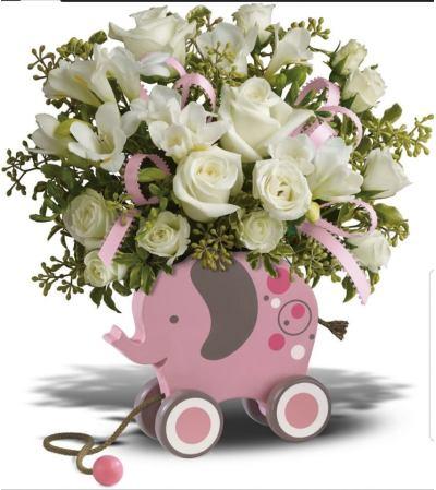 Baby Elephant Girl