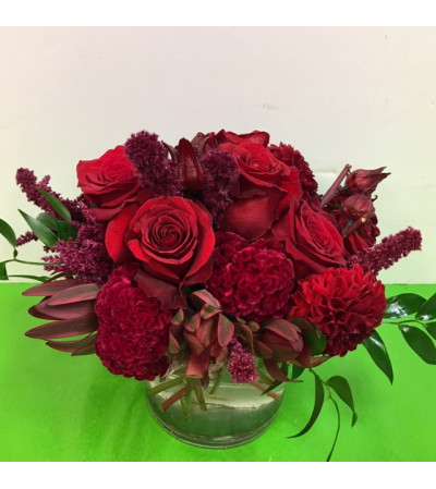 Red Rose Bomb