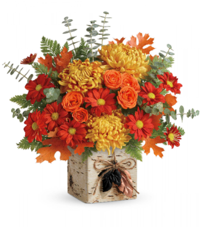 Wild Autumn by Teleflora