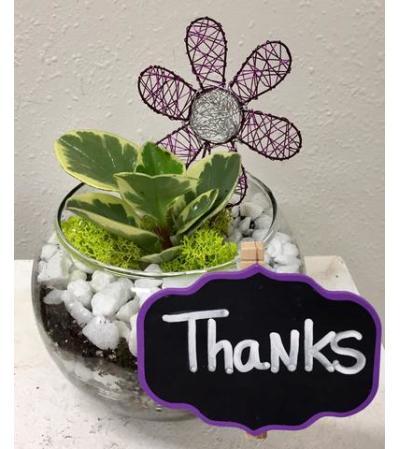 Thanks to you! Terrarium Bowl