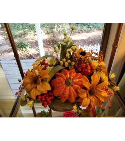 Wonders of Fall